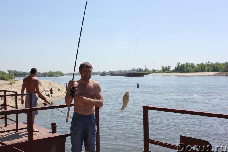 кочетковский рыбалка